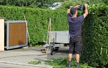 professional Halifax hedge cutting services