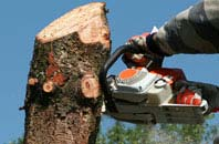 free Halifax tree removal quotes